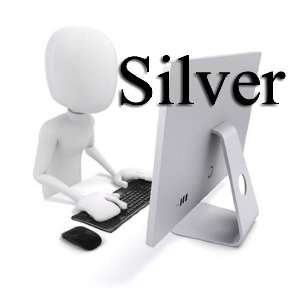 Premium Support Silver